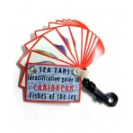 Sea Fan Identification Fish Guide Cards Scuba & Snorkeling