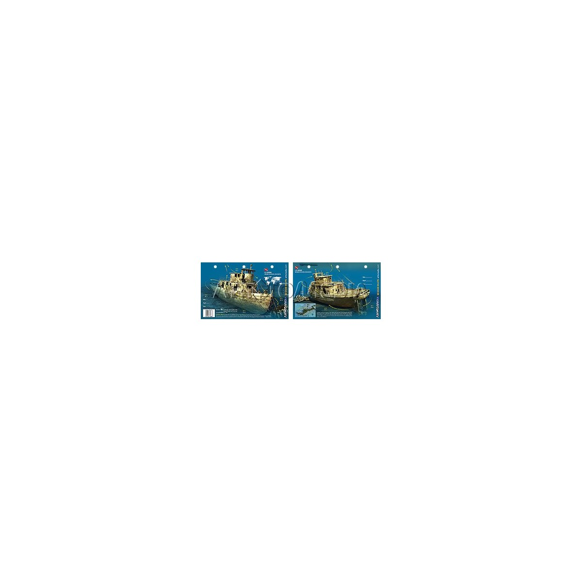 La Rose in the Bahamas (8.5 x 5.5 Inches) (21.6 x 15cm) - New Art to Media Underwater Waterproof 3D Dive Site Map
